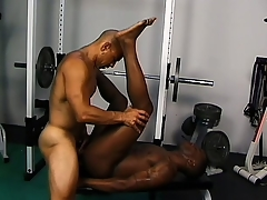 Ridged gloomy studs explanations the gym into their personal sexual intercourse room