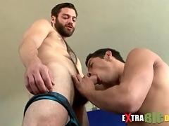 Lanate bear gets a big cock blowjob