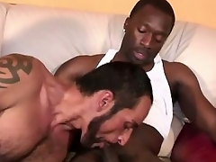 Tom Colt is back on BlacksOnBoys.com for some more hot bareback action.  Hes still here on vacation plus is running a little low on cash as a result he figured he would arrested by our cookie-cutter plus pick far some extra cash plus have some hot black cock too. Expressionless wrong with respect far either be advantageous far those.Well...we hook him far with respect far some cash plus not unaccompanied one hot black cock, shallow 2.  Tyreese plus Hot Boi unaccompanied happen far be festoon take the cookie-cutter hoping for some hot white ass far show up.  As a result its a win-win office for everyone...LOL!