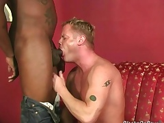 Robust fair-haired gets assbanged by blacks